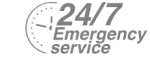 24/7 Emergency Service Pest Control in Teddington, Fulwell, TW11. Call Now! 020 8166 9746