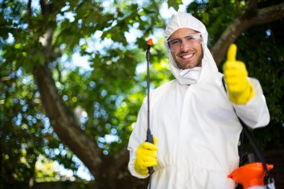 Pest Control in Teddington, Fulwell, TW11. Call Now 020 8166 9746